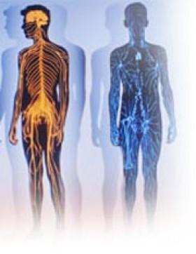 Воспаление десны чем лечить народные методы
